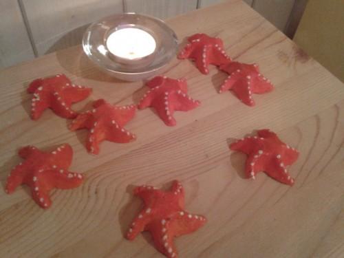 Orange Clay Starfish  (Sjöstjärnor)