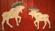 """The Albino Moose"" – White Wooden Moose board hanger"